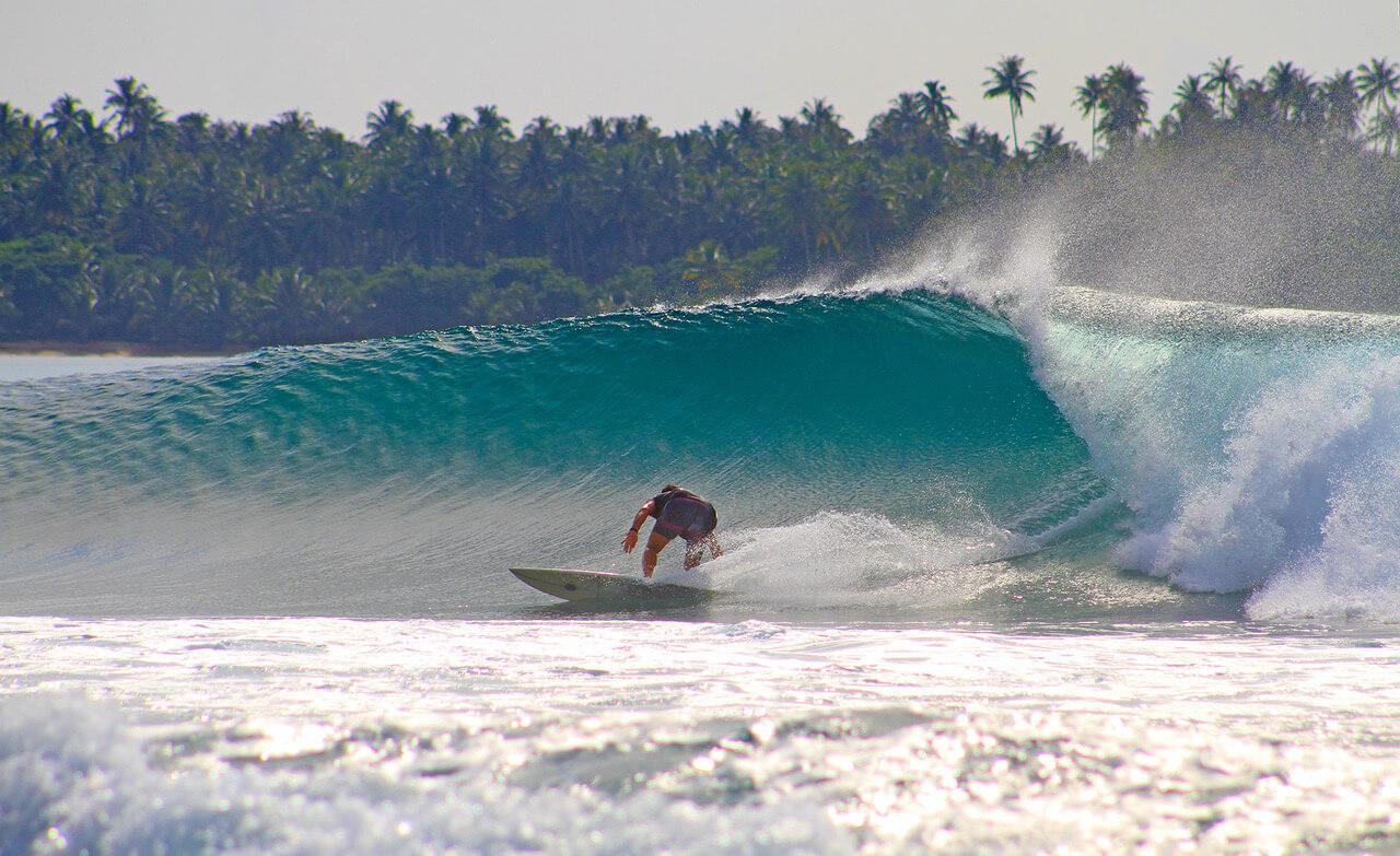 Tom Hartmann Surf